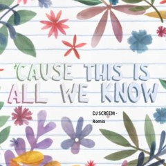 The Chainsomkers ft. Phoebe Ryan - All We Know - DJ SCREEM Edit