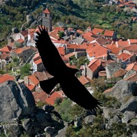 John Tenney: Over Viseu