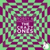 Bobsy & Unstrument - The Crazy Ones