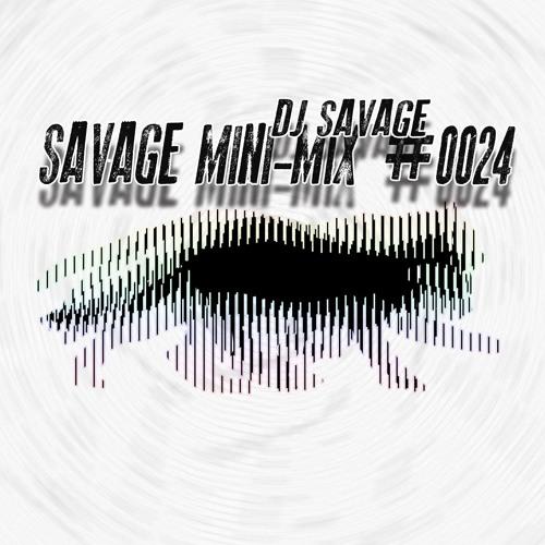 SAVAGE MINI-MiX #0024