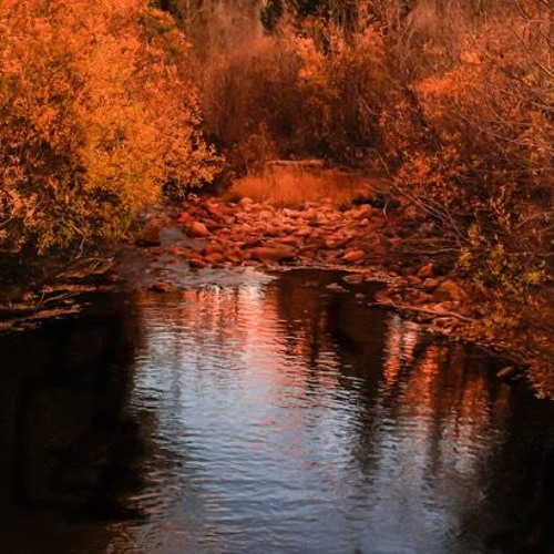 Reflected in a Flowing Stream