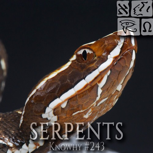 Why Did Snakes Infest Jaredite Lands During A Famine? #243