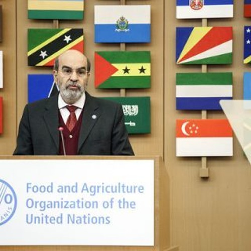 Opening ceremony of the FAO/WHO International Symposium on Sustainable Food Systems-DG