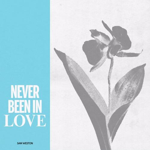 SSV011: Sam Weston - Never Been In Love EP