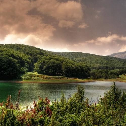 Слушай Как Шумят Буките - Македонская Четническая Песня