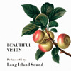 Beautiful Vision Podcast 066 by Long Island Sound