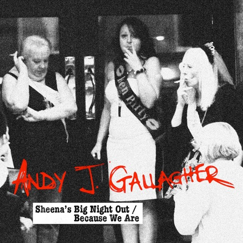 Andy J Gallagher - Because We Are