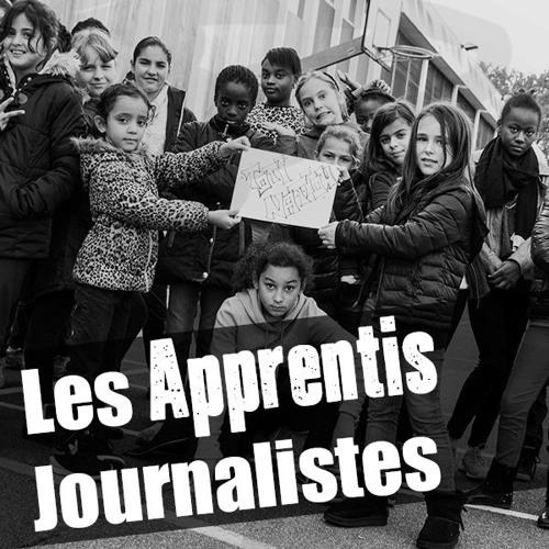 Les Apprentis Journalistes