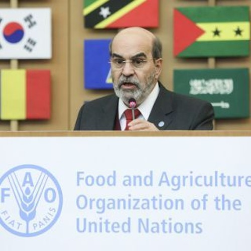 Closing ceremony of the FAO/WHO International Symposium on Sustainable Food Systems-FAO DG
