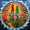 Make It Bun Dem (Ft. Damian Jr. Gong Marley)MR.ZAiKO Remix) - Skrillex