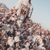 $onoma – New Bitch ft. A$AP Ant x Malcs x C.King (prod. MexikoDro)