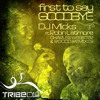First to Say Goodbye (DJ Micks 2010 Peoples Mix)