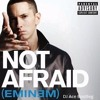 Eminem - Not Afraid (Dj Ace Bootleg) CLICK BUY FOR FREE DOWNLOAD