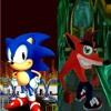 Sonic & Crash Bandicoot- Sewer Plant Zone