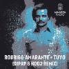 Rodrigo Amarante - Tuyo (DiPap & Hooj Remix)