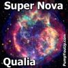 Super Nova (Qualia)