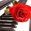 1036 Smooth 70s Summer Beach Piano Love Waves 6/8 Dance Groove Beat Theme 120 Bpm 3 Yamaha solos
