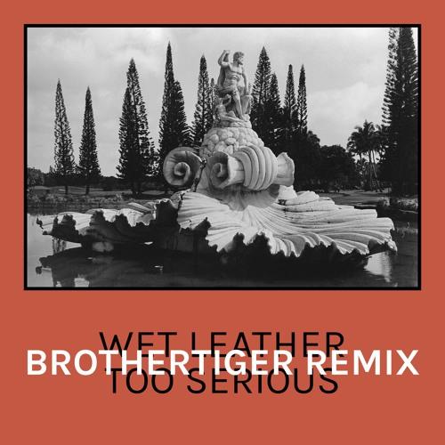 Wet Leather - Too Serious (Brothertiger Remix)