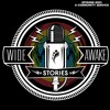 """Wide Awake Stories #003 """"A Community Service"""" ft. Kennedy Jones, Moontribe, Nigel Ficke and more mp3"""