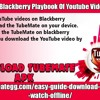 Offline View On Blackberry Playbook Of YouTube Video By TubeMate.mp3