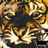 Surviver - Eye of The Tiger(Acoustic)