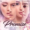 Melly Goeslaw - Promise - Ost. Promise.mp3