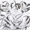 Download The Tiger (original song) Mp3