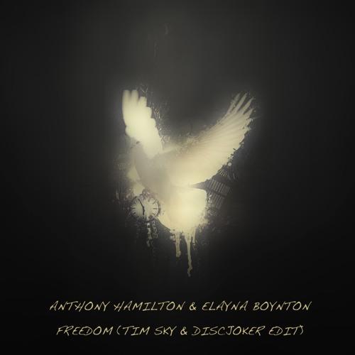 Freedom (Tim Sky & DiscJoker Edit) - Anthony Hamilton & Elayna Boynton