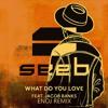 SeeB - What Do You Love (ENOJ Remix)