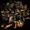 First Listen: Santa Muerte & WWWINGS - 'Void' (Infinite Machine)
