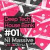Deep Tech House (NI Massive)