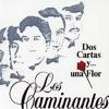 2 Cartas Y Una Flor - Los Caminantes ( Dj Fres Chb Remix) Demo Portada del disco
