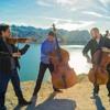 Avicii - Wake Me Up (Violin,Cello,Double-bass)