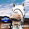 Zahut - Ket Is For Horses