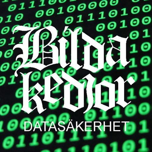 Avsnitt 18 - Datasäkerhet