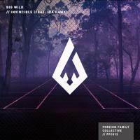 Big Wild - Invincible (Manila Killa Remix)
