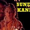 Sundari Kannal Oru Seithi (Kanuke Icha Manasantha) cover by Gopi & Keerthana