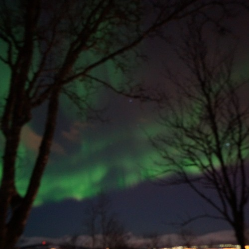 Tromsø Sky (ft. CvA Jazz Choir)