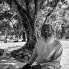 Download আমি কোথায় পাব তারে / Ami Kothay Pabo Tare Mp3