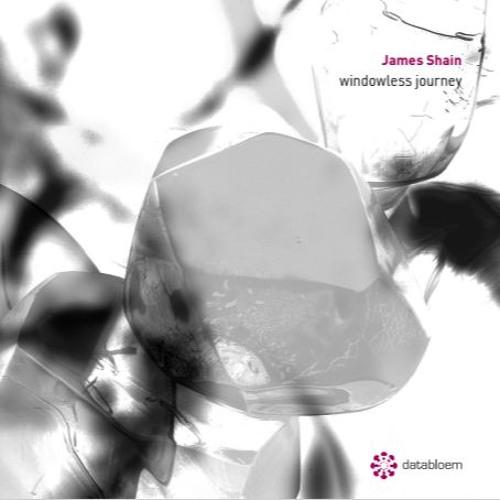 James Shain - Windowless Journey