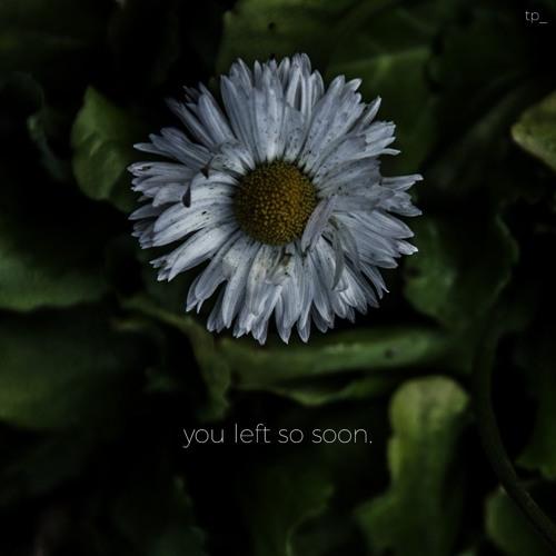 You Left So Soon