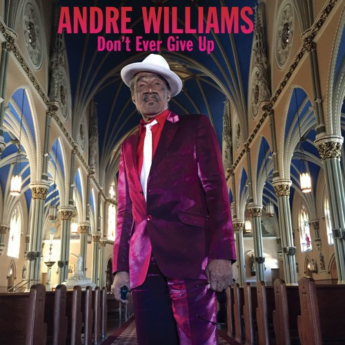 Andre Williams / Don't Ever Give Up