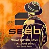What Do You Love feat. Jacob Banks (Palmfeldt Remix)