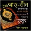 95. সূরা আত্ তীন (Surah At Tin) Bangla Translate