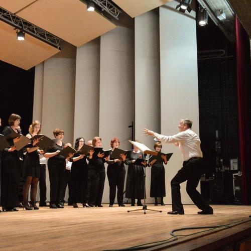 Ave Maria (Composer: Bart Verstraeten, performers: Capella di Albero - Peter Ickx)