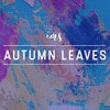 Autumn Leaves - Chris Brown (ims remix)