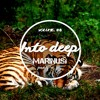Download Marinus feat. Poes - Into Deep | Volume #8 Mp3