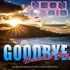 The Neon Droid - Goodbye Paradise Bay