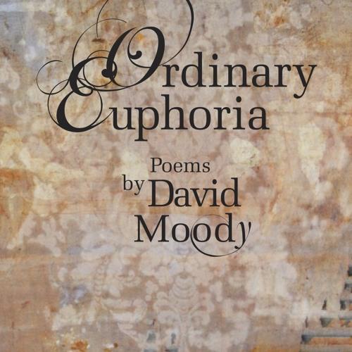 Ordinary Euphoria #2