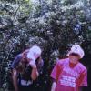 Suicide Boys Mount Sinai Album Cover